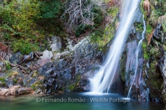 Waterfall at Estrela Mountain