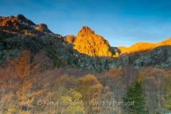Serra da Estrela Nature Park