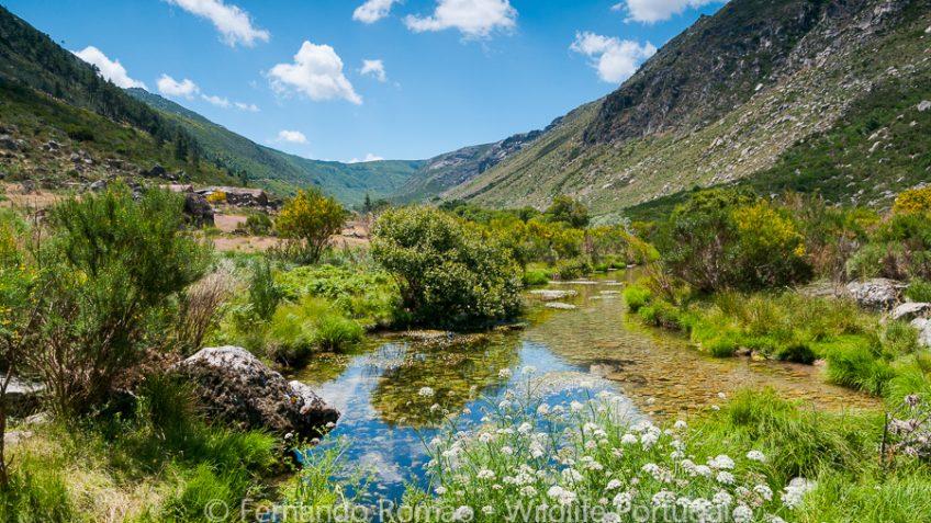 Zêzere Glacier Valley - Estrela Mountain