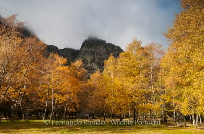 Serra da Estrela - Passeio Fotográfico