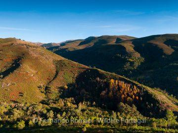 Alvão Nature Park