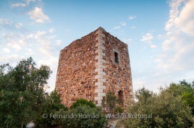 Ródão Castle