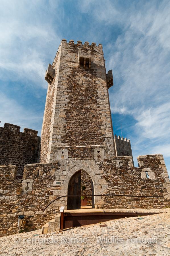 Castle of Sabugal