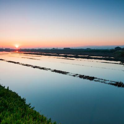 Mondego Estuary Saltpans