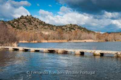 Côa River near Castelo Mendo