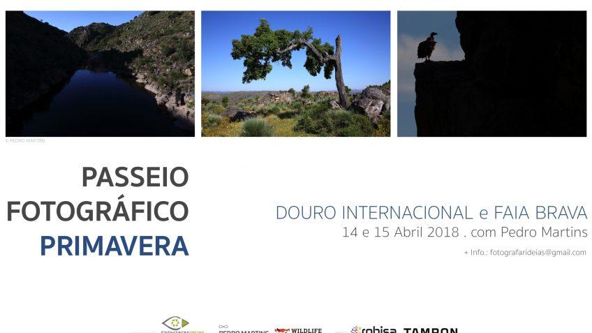 Primavera_Douro Internacional 2018
