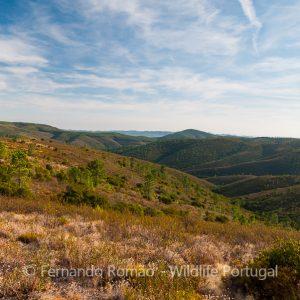 Malcata Nature Reserve