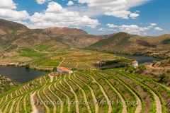 Upper Douro vineyards