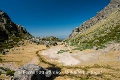 Loriga valley