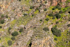 Mosteiro Stream Valley